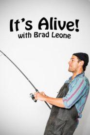 It's Alive! With Brad